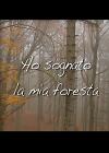 Ho sognato la mia foresta