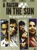 A raisin in the sun - Un grappolo di sole