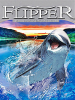 Le nuove avventure di Flipper